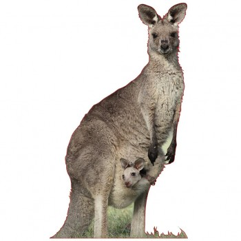Kangaroo and Joey Cardboard Cutout - $44.95
