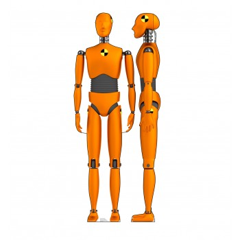 Crash Test Dummies (Two for One) - $39.95