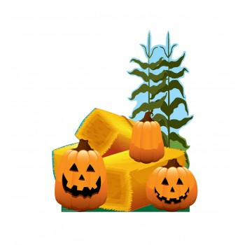 Pumpkin Patch - $39.95