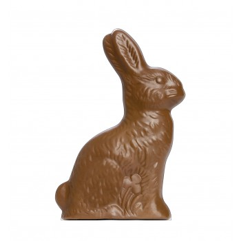 Chocolate Easter Bunny - $39.95