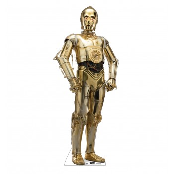 C-3PO™ (Star Wars IX) - $39.95