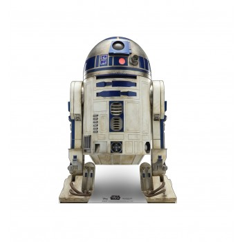 R2-D2™ (Star Wars IX)