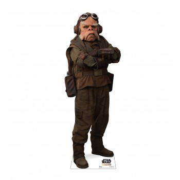 Kuiil (The Mandalorian Disney/Lucas Films) - $39.95