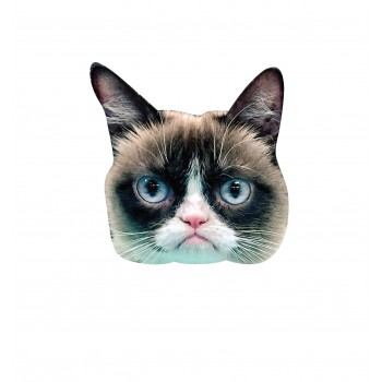 Grumpy Cat Big Head - $39.95