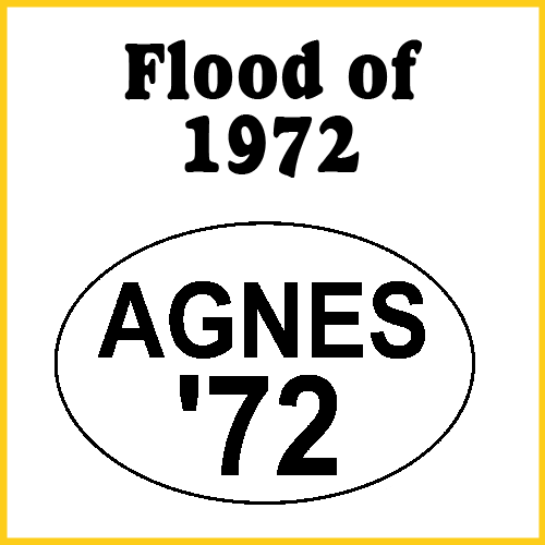 Flood of 1972 Agnes Bumper Sticker