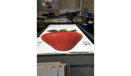 Big Fruit Cutouts
