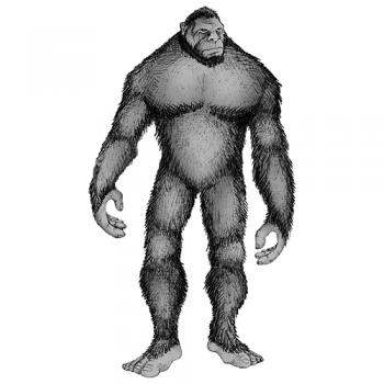 Grey BigFoot