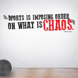 Sports Chaos Wall Decal