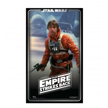 Luke Skywalker Backdrop (Star Wars 40th Empire Strikes Back) - $39.99
