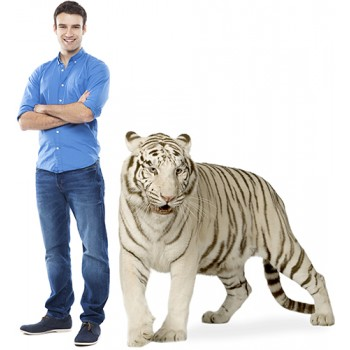 White Tiger Cardboard Cutout - $39.99