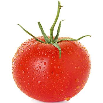Wet Tomato Cardboard Cutout - $49.99