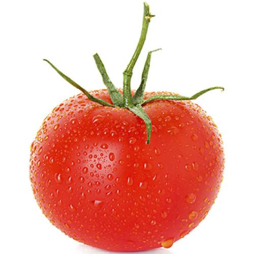 Wet Tomato Cardboard Cutout