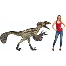 Deinonychus Dinosaur Cardboard Cutout
