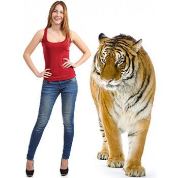 Tiger Standing Cardboard Cutout - $59.99