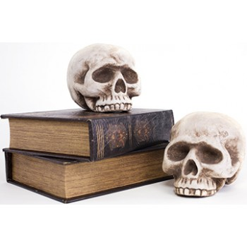 Books and Halloween Skulls Cardboard Cutout