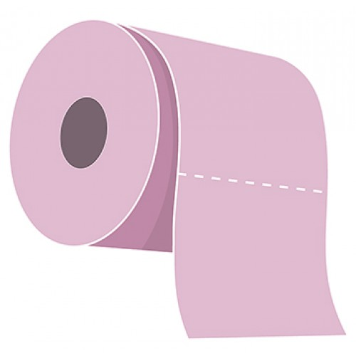 Womens Bathroom Toilette Paper Cardboard Cutout
