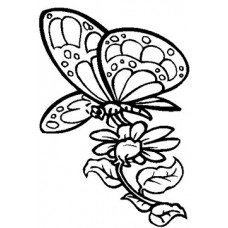 Butterfly 2 Cardboard Coloring Cutout