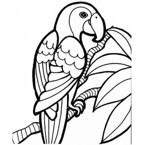Colorful-Parrot Cardboard Coloring Cutout