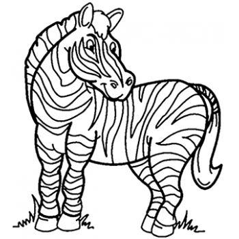 Zebra Stripes Cardboard Coloring Cutout