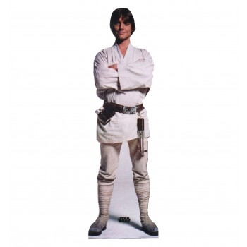 Luke Skywalker Star Wars Cardboard Cutout - $39.95