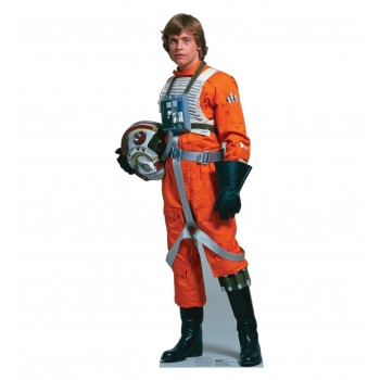 Luke Skywalker Rebel Pilot Star Wars Cardboard Cutout - $39.95