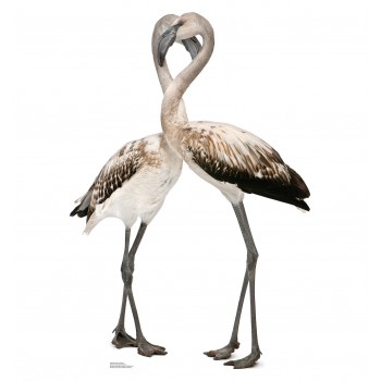 Flamingos Love Birds Cardboard Cutout