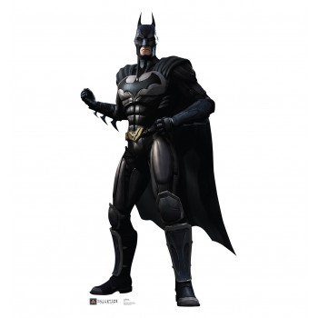 Batman Injustice DC Comics Game Cardboard Cutout