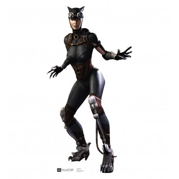 Catwoman Injustice DC Comics Game Cardboard Cutout