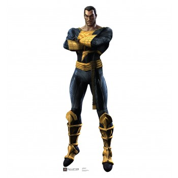 Black Adam Injustice DC Comics Game Cardboard Cutout - $39.95