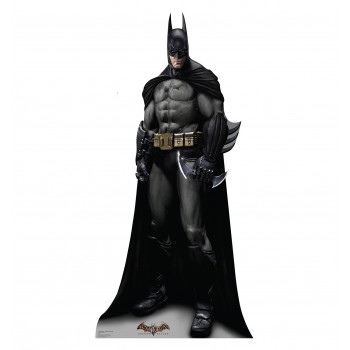 Batman Arkham Asylum Game Cardboard Cutout - $39.95