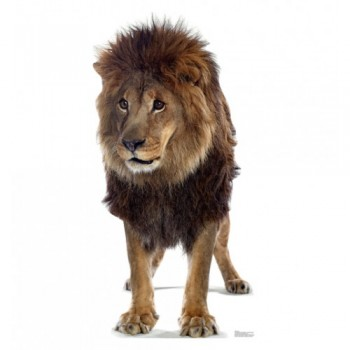 Lion - TALKING Cardboard Cutout
