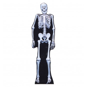 Skeleton Cardboard Cutout - $39.95