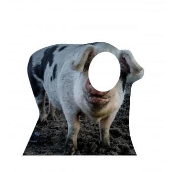 Pig Standin Cardboard Cutout - $39.95