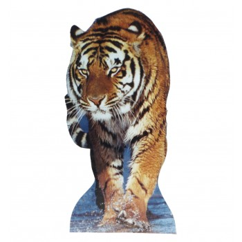 Tiger - TALKING Cardboard Cutout - $49.95