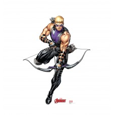 Hawkeye (Avengers Animated)