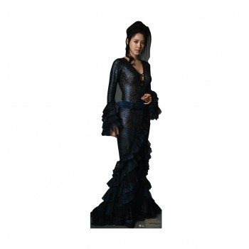 Maledictus Fantastic Beasts The Crimes of Grindelwald Cardboard Cutout - $39.95