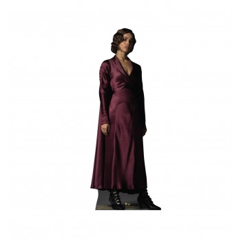 Leta Lestrange Fantastic Beasts The Crimes of Grindelwald Cardboard Cutout - $39.95