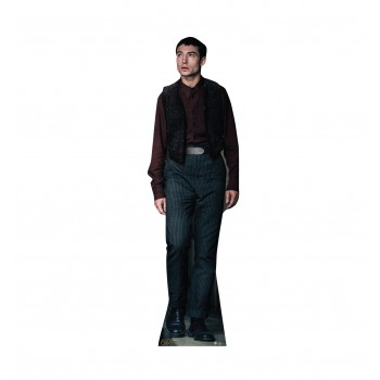 Credence Barebone Fantastic Beasts The Crimes of Grindelwald Cardboard Cutout