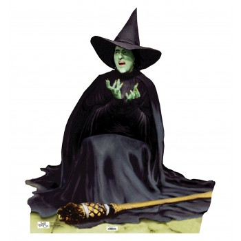 Wicked Witch Melting Wizard of Oz Cardboard Cutout