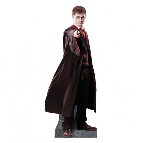 Harry Potter Cardboard Cutout
