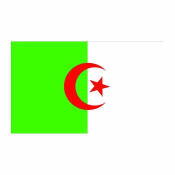 Algeria Flag Cardboard Cutout - $0.00