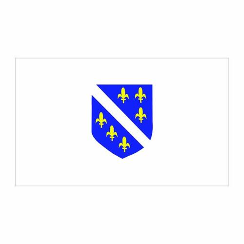 Bosnia-Herzegovina Flag Cardboard Cutout