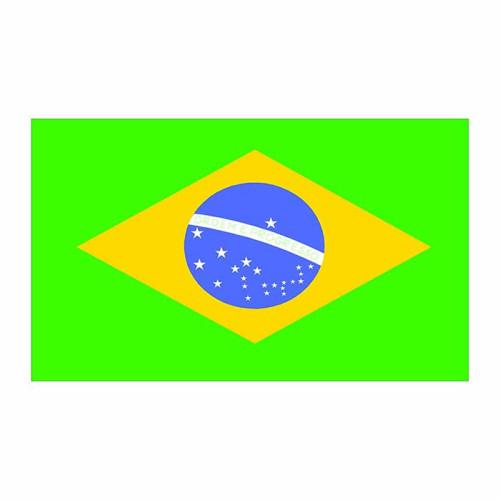 Brazil Flag Cardboard Cutout