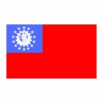Burma Flag Cardboard Cutout - $0.00
