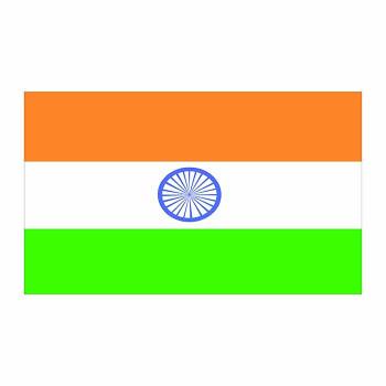 India Flag Cardboard Cutout - $0.00