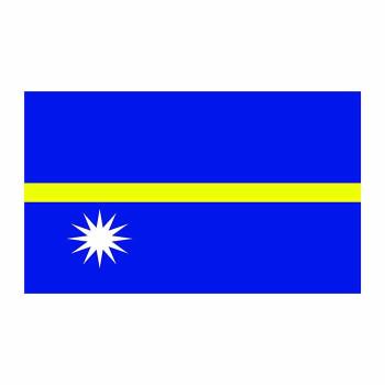 Nauru Flag Cardboard Cutout - $0.00