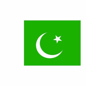Pakistan Flag Cardboard Cutout - $0.00
