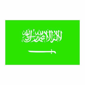 Saudi Arabia Flag Cardboard Cutout - $0.00