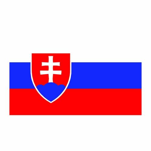 Slovakia Flag Cardboard Cutout