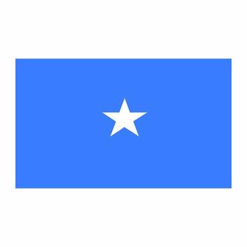Somalia Flag Cardboard Cutout - $0.00